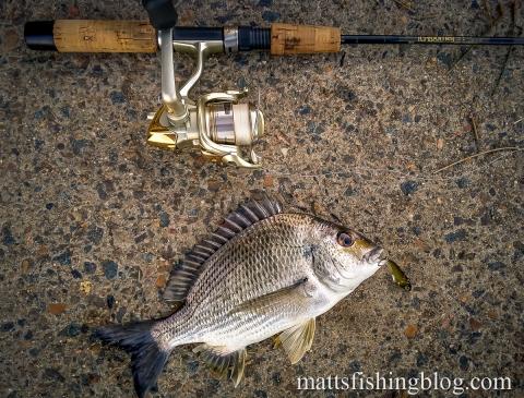 20150523 Narrabeen Lake 09