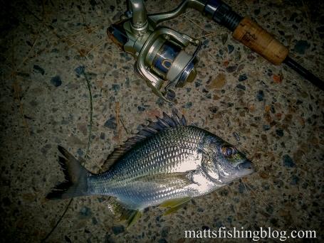 20150523 Narrabeen Lake 12